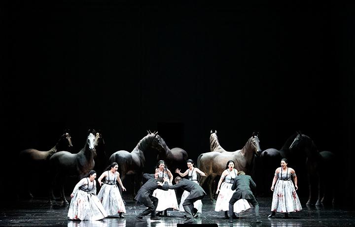 Photo: Wiener Staatsoper/Michael Poehn
